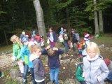 Unser Platz im Wald