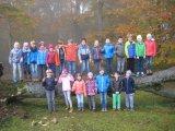 Ein Waldteam ...