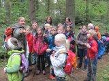 Projekt Wald Kl. 3a