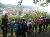 Klasse 2a auf dem Weg zum Frauenberg