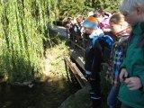 Der Bach fließt in die Altmühl!